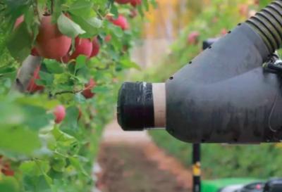 """苹果采摘机器人在新西兰""""上岗"""" 可自动识别苹果成熟度及位置"""