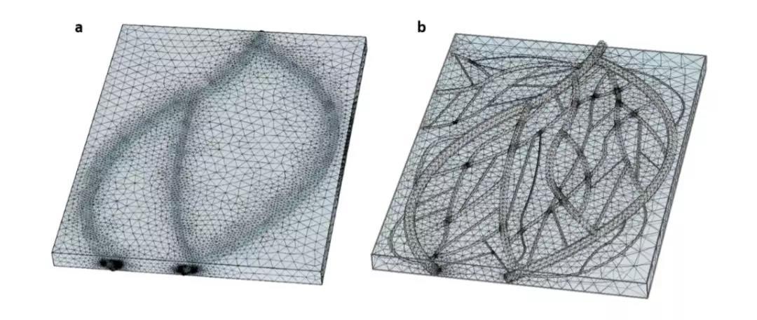 首个用人类脂肪通过3D打印的人造心脏诞生,有望变革器官移植