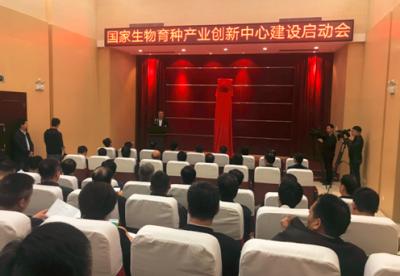 """国家生物育种产业创新中心开建 将解决中国种业""""卡脖子""""技术问题"""