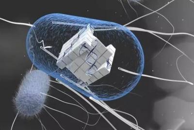 瑞士苏黎世联邦理工学院开发出首个具有双核处理器的细胞计算机
