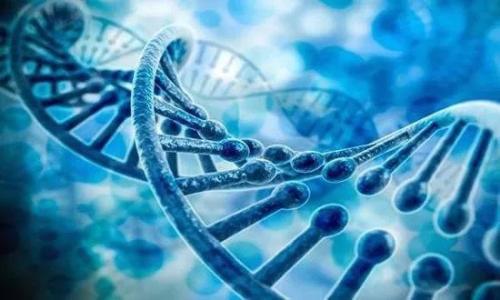 """我国基因测序产业分析仪器发展的""""困""""与""""惑"""""""