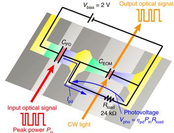 首颗媲美硅硬件的光子硬件研发成功 光子计算或成高速技术未来