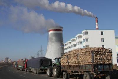美国南方电力以4.6亿美元出售美国最大木质生物电厂之一