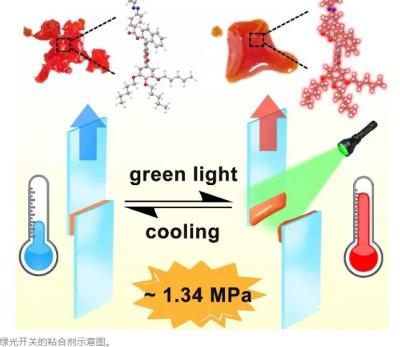北化教授开发高度可逆光控粘合剂 容易清洗回收可重复使用