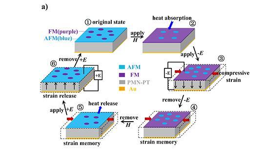 固态制冷技术:制冷循环与应变记忆效应相结合的新方法