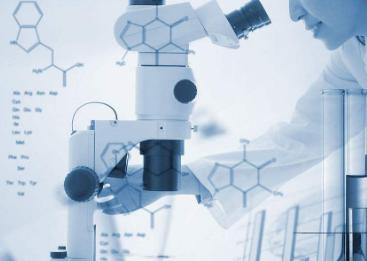 浙大研发单原子OER催化剂 可将制氢成本降低80%