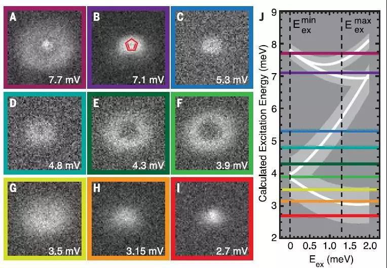 复旦大学联合多所机构为超级显微镜的成像作用奠定了基础