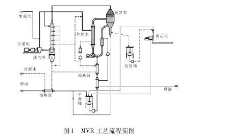 制盐工艺:MVR工艺流程与技术优势(工程实例)