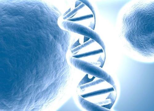 贺建奎事件促中国推出关于人类基因编辑的法律条文,明年或可通过