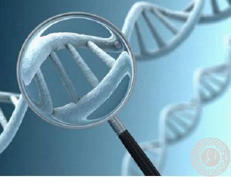 波士顿大学发现一种罕见的基因突变可能能预防心脏病