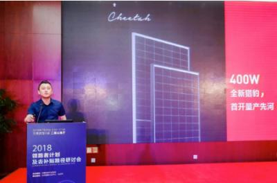 晶科Cheetah上市一年订单逾5GW 市场接受度高下半年供不应求