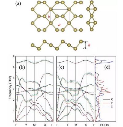 传统QHA方法更新:计算单层碲材料各向异性热膨胀和热动力学性质