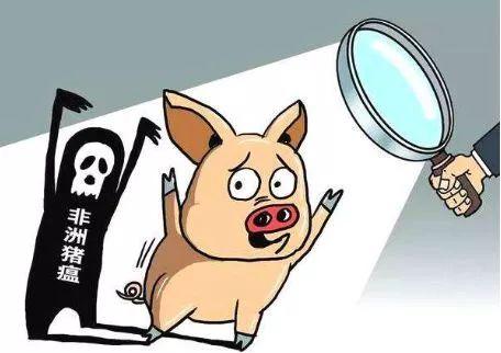 非洲猪瘟疫苗取得阶段性成果,中粮肉食跌超8%而兽用疫苗股拉升