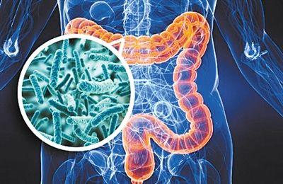 """微生物""""暗物质""""CPR细菌被发现,或将改写人类生命健康"""