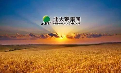 北大荒绿色农作物监测面积达3600万亩 占总耕地面积的84%