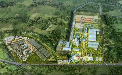 """""""斑布竹产业园百万吨竹材生物质精炼项目""""开工仪式成功举行"""