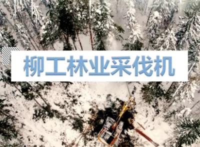 柳工林业采伐机焕新上市 全新设备升级
