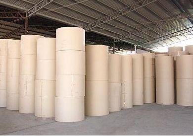 泰盛集团将在福建建设年产45万吨漂白硫酸盐竹浆生产线