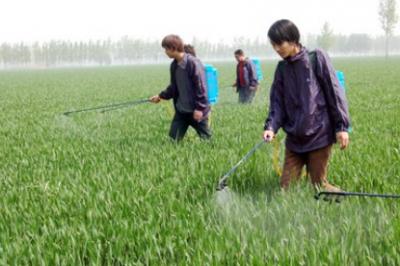 2019下半年农药化工市场展望:需求疲弱 走势分化
