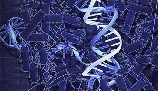 中科院等研制的新型纳米颗粒可更高效将Crispr基因编辑工具送入细胞
