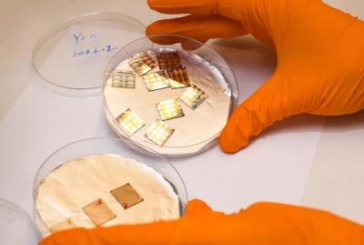 新进展!瑞典林雪平大学制造高品质高效的钙钛矿LED