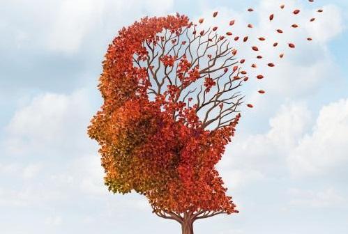 新血液检测法预测痴呆症的准确率高达94%,由美国华盛顿大学医学院研制