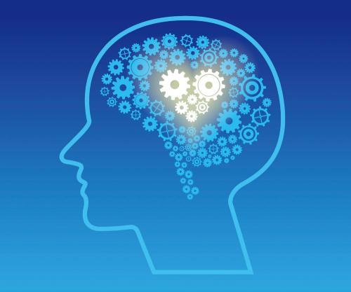 巴塞尔大学发现成体海马区神经干细胞静息状态维持的关键