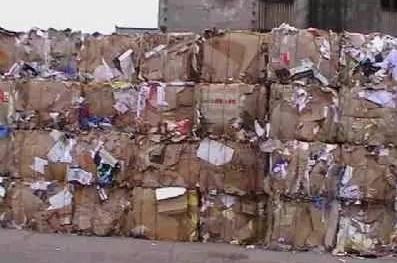 我国废纸价格颓势减缓  理文等十多家纸厂上调收购价
