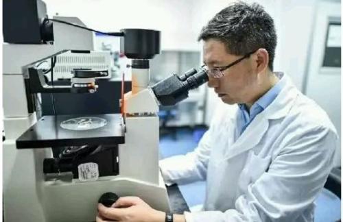 创新药第一股微芯生物上市成功:VC/PE上演了18年接力赛