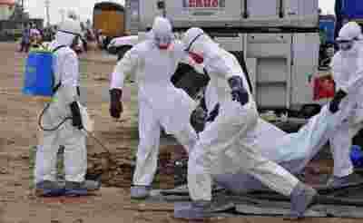 美国研究所称埃博拉特效药将问世 Science及Nature双头条