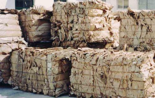 2019年第11批废纸进口许可证公示 今年核定量已超过千万吨