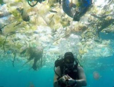 北极冰芯已发现塑料微颗粒,塑料污染已远及地球上最偏远水域