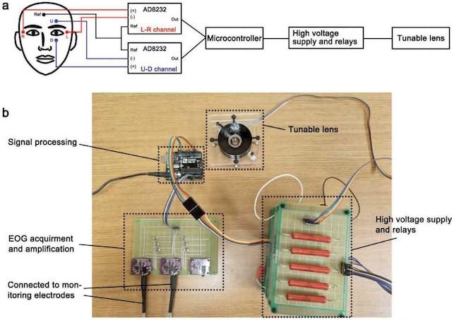 新型柔性机器人镜头 或可用人眼控制和调整