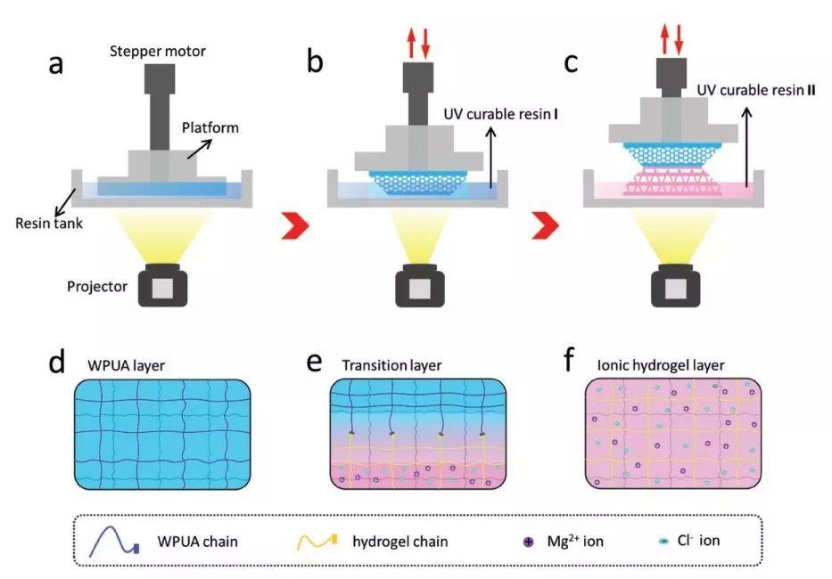 加拿大3D打印离子皮肤:实现高效、稳定传感性能
