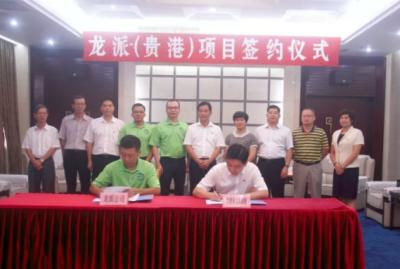 龙派实业纸品项目落户广西贵港 总投资31亿元