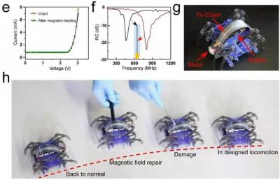 科学家研发磁性液态金属多功能柔性电路 可修复、可降解及转印