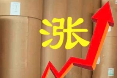 14省40家纸厂已发涨价函  最高涨200元/吨
