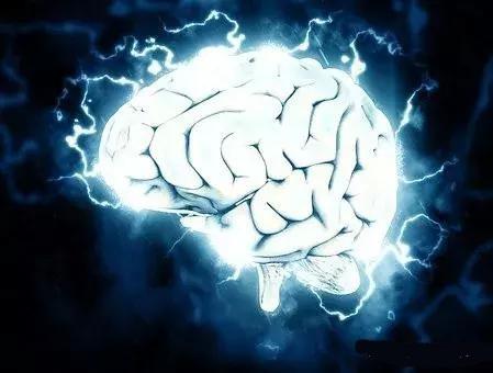 Nature发文展示迄今为止最详细的人脑零部件清单