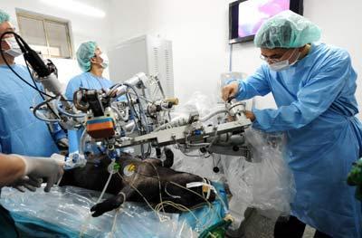 内地最新一代手术机器人亮相 手术视野更为清晰、开阔