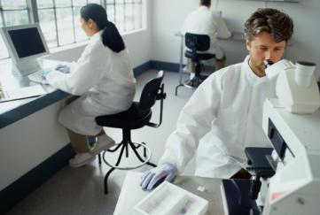高效室温固氮电催化剂制备成功 可进一步提高电催化性能