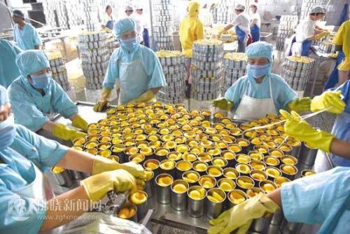 中央财政部拟安排100亿元 大力支持发展农产品深加工等