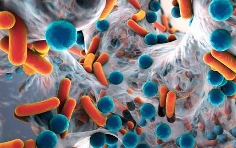 突破傳統耐藥基因組測序缺陷!靶向測序為對抗耐藥菌帶來新方向