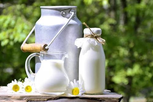 德国牛奶公司和福德赛兰公司两家乳品企业召回问题牛奶