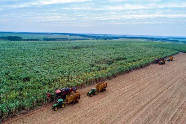 膜法绿色制糖新技术一举颠覆糖业140余年传统制糖工艺