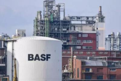 巴斯夫加大生物技术投入 进入天然香精香料原料市场