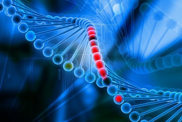 耶鲁大学研发寻找癌细胞系统,可以对抗多种癌症