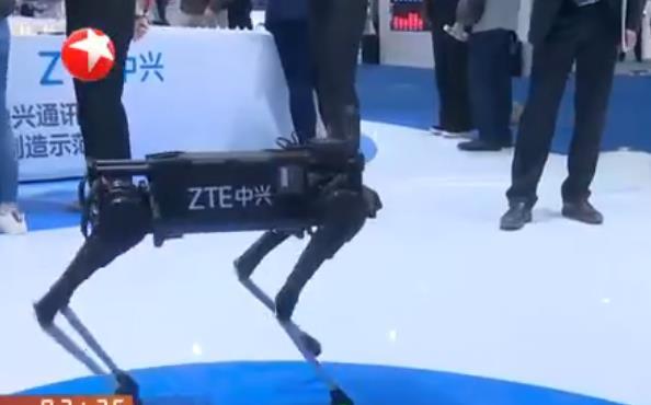 """揭秘!2019世界智能制造大会 各种新科技展现""""未来感"""""""