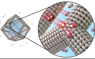 深圳先进院揭示黑磷化学活性构建高效铂磷催化剂的机制