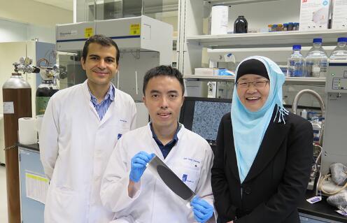 新加坡科学家研发新型锂硫电池阴极制备法 可大大简化生产过程