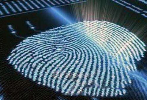 荷兰科学家研发新型柔性高分辨率指纹识别传感技术